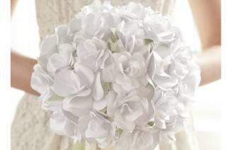 bouquet imm evid