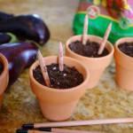 Idee regalo: le matite che diventano fiori