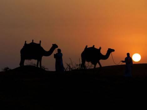Ras Al Khaimah - desert