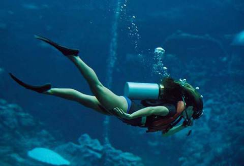 diving cariati