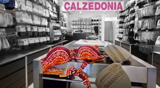 calzedonia_def_800