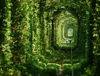 tunnel dell'amore in ucraina