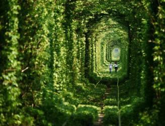 tunnel dell'amore in ucraina