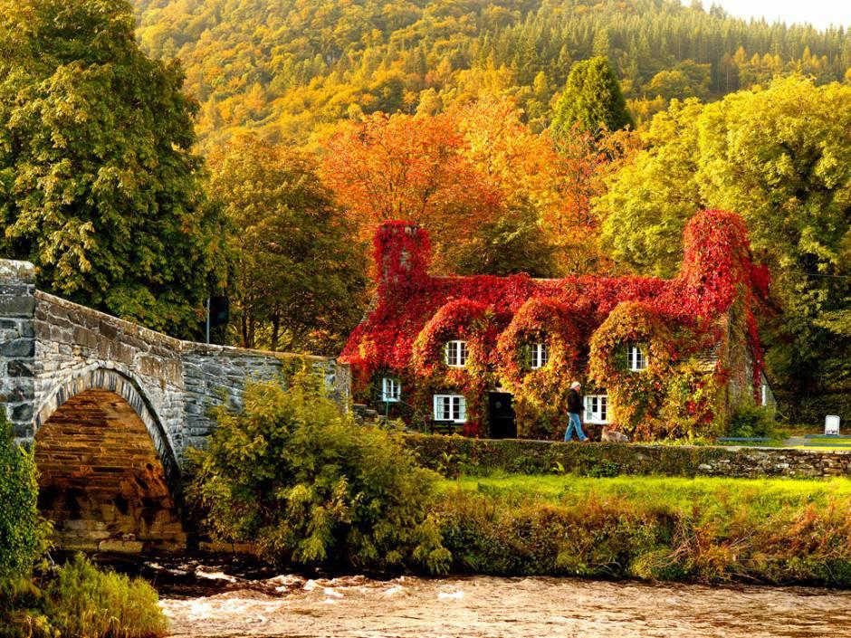 Favoloso Galleria fotografica: i luoghi più belli da visitare in autunno TU45