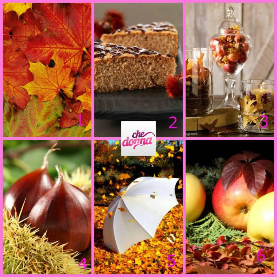 autunnotest
