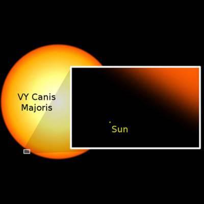 Il Sole, confrontato con le stelle più grandi.