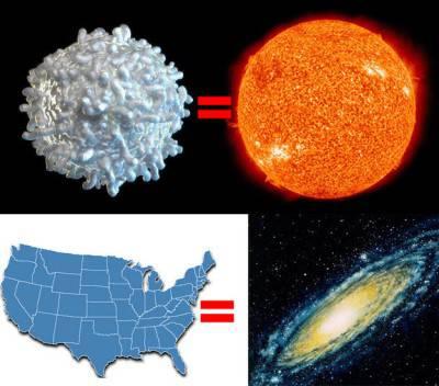 Il Sole, paragonato all'intera Galassia, sarebbe grande come gli Stati Uniti.
