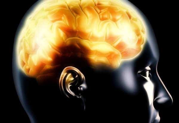 morte-cerebrale