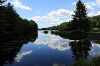 New Study Finds New England's Forests Threatened By Development