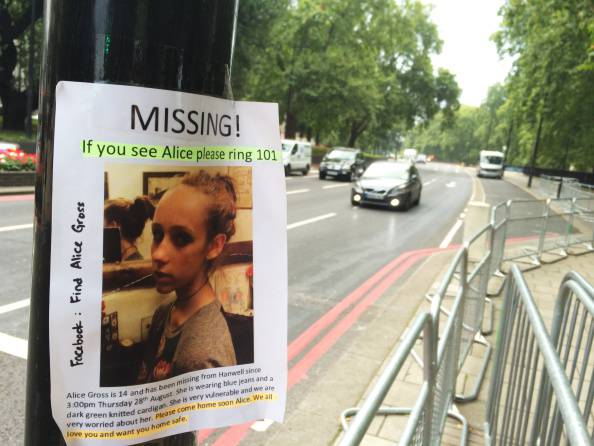 Search For Missing Teenager Alice Gross Continues