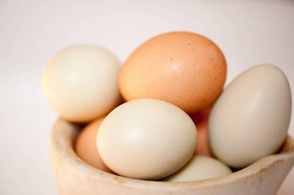 Valdale-Farm-Eggs-1005