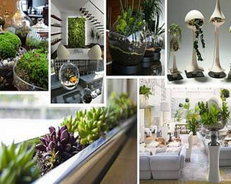 inspirative-indoor-garden-with-green-plant-decoration-ideas