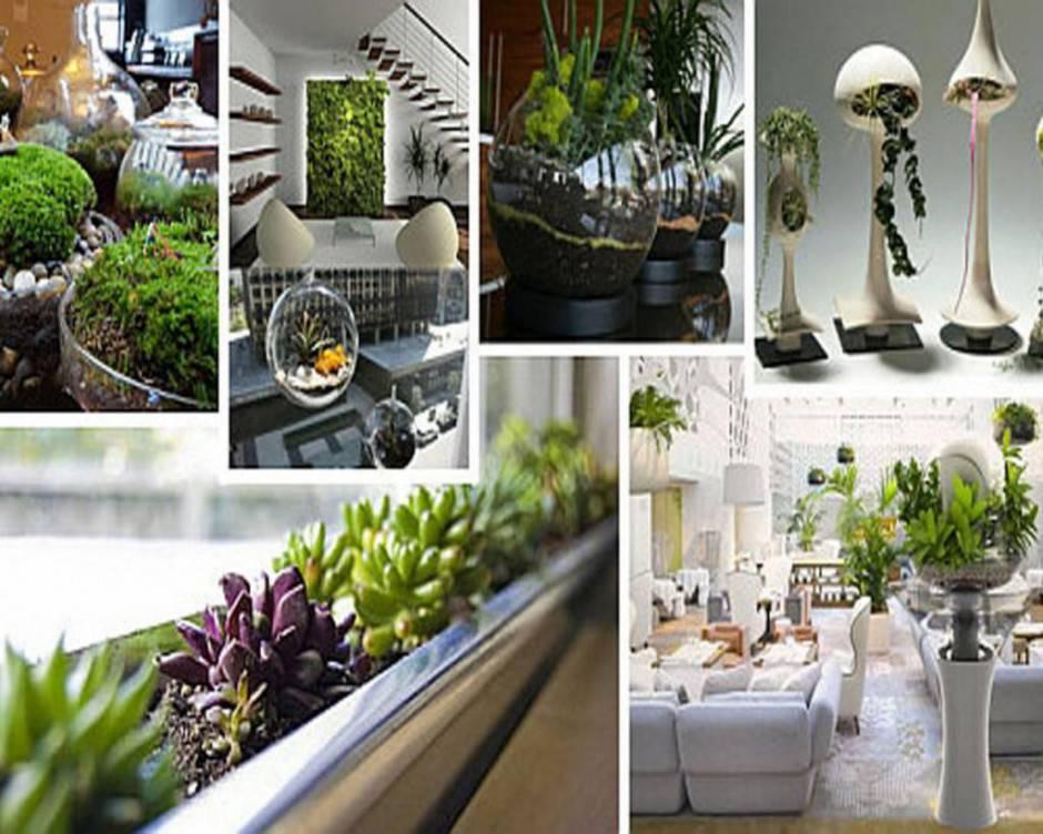 Spunti e idee per arredare la casa con le piante da interno Interior design plants inside house