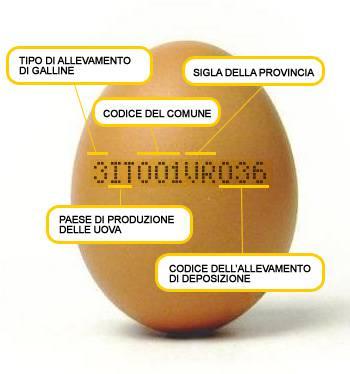 etichetta(1)