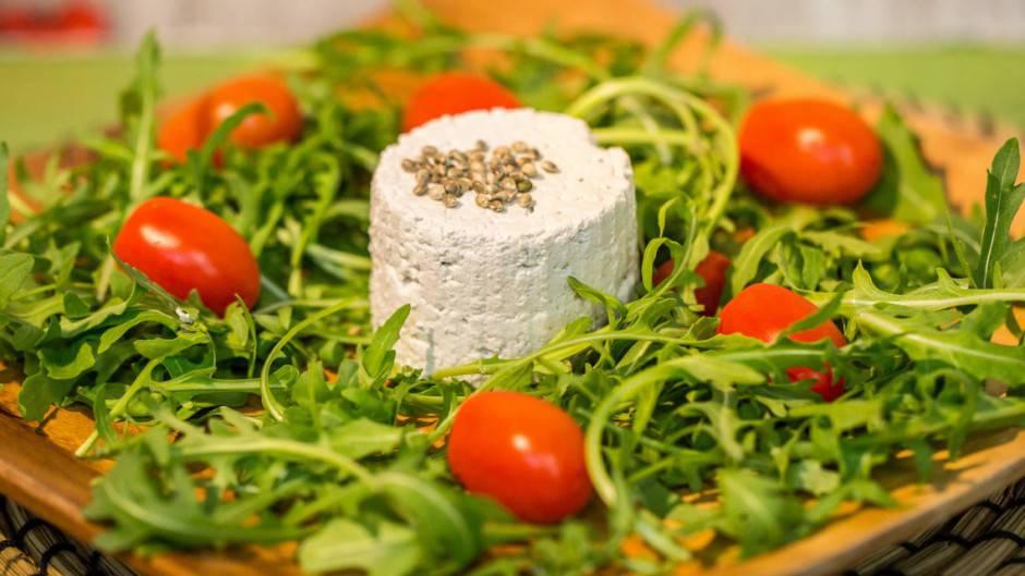 tofu-canapa