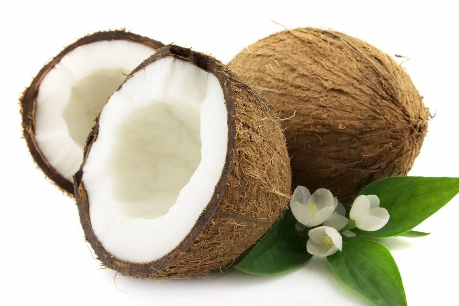 gusci di cocco