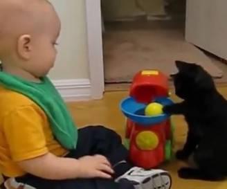 Bimbo e gatto (screenshot)