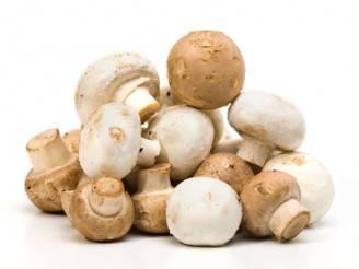 ricetta secondi piatti con funghi