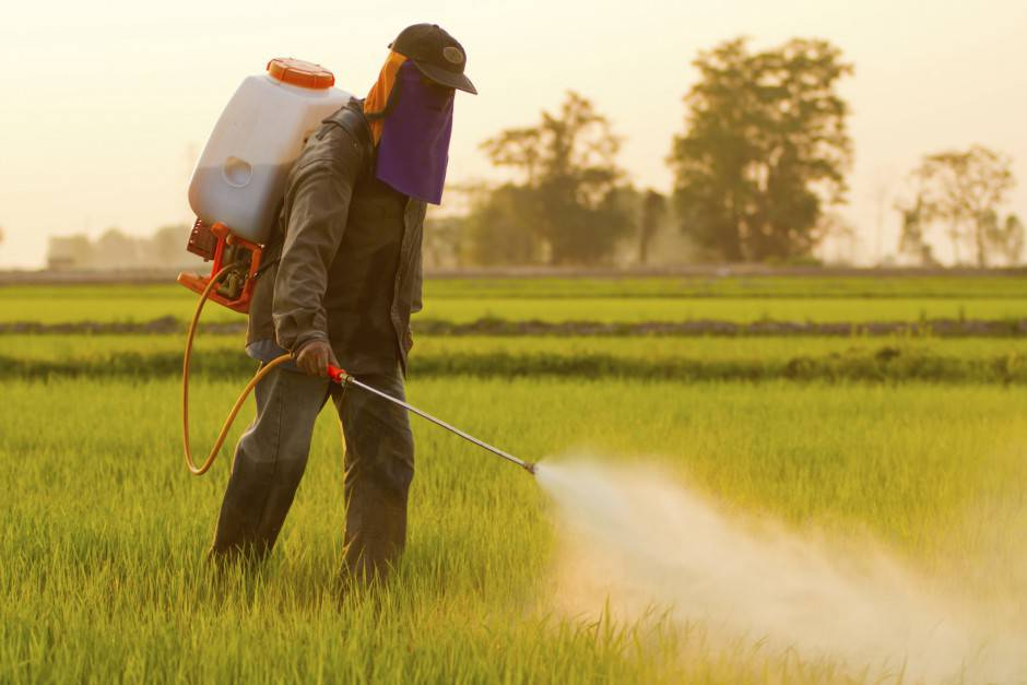 Pesticidi (Thinkstock)