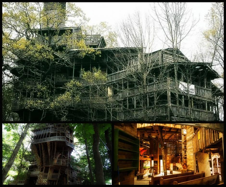 Horace burgess 39 s treehouse la chiesa sull 39 albero alta 30 metri - Costruire casa albero ...