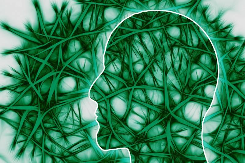 Neuroni (Pixabay)