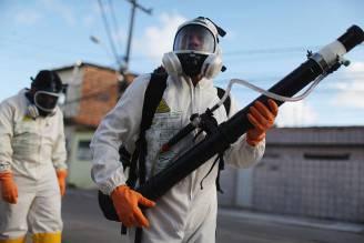 Virus Zika in Brasile (Mario Tama/Getty Images)