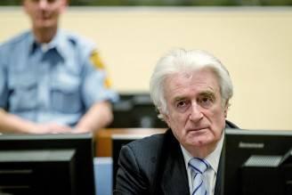 Radovan Karadzic (ROBIN VAN LONKHUIJSEN/AFP/Getty Images)