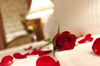 red-rose-petals-on-bed