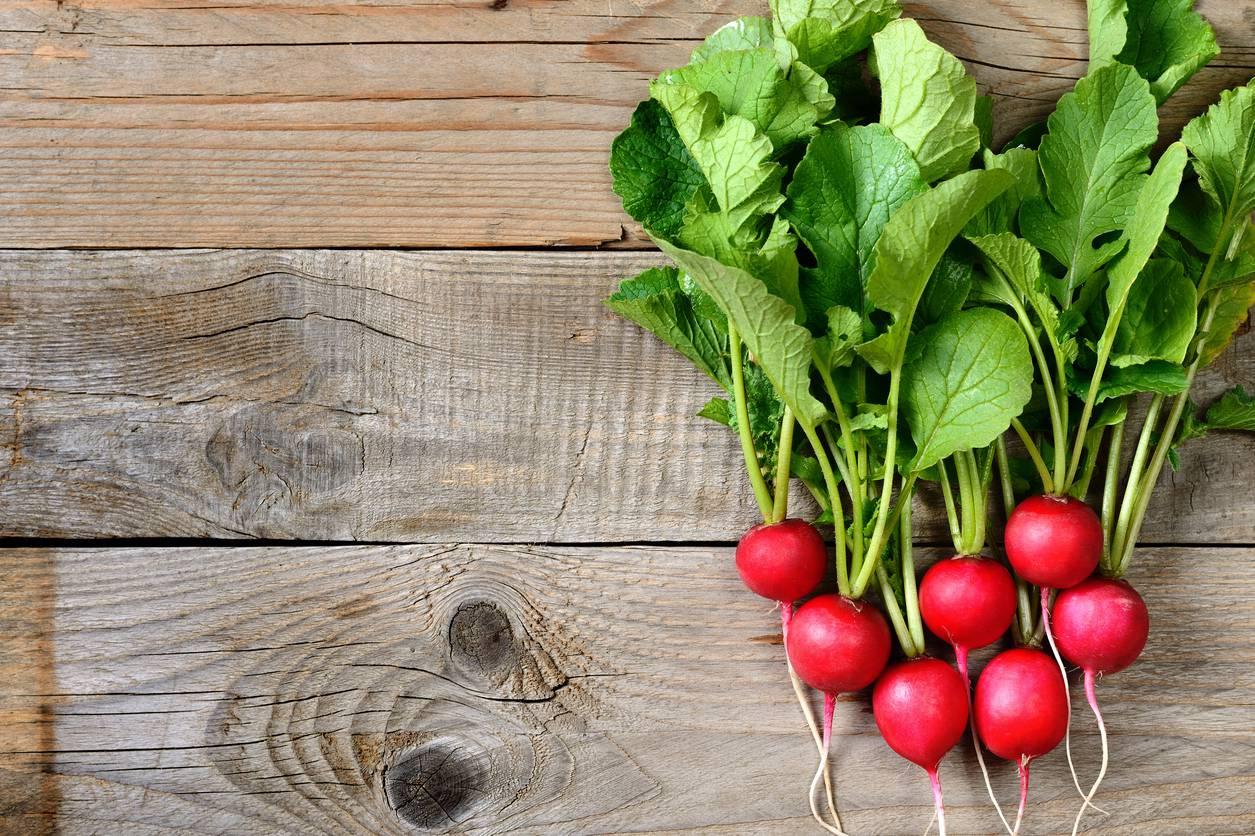 Alimentazione I Ravanelli E Le Loro Proprieta Ideali Per Una Dieta Detox