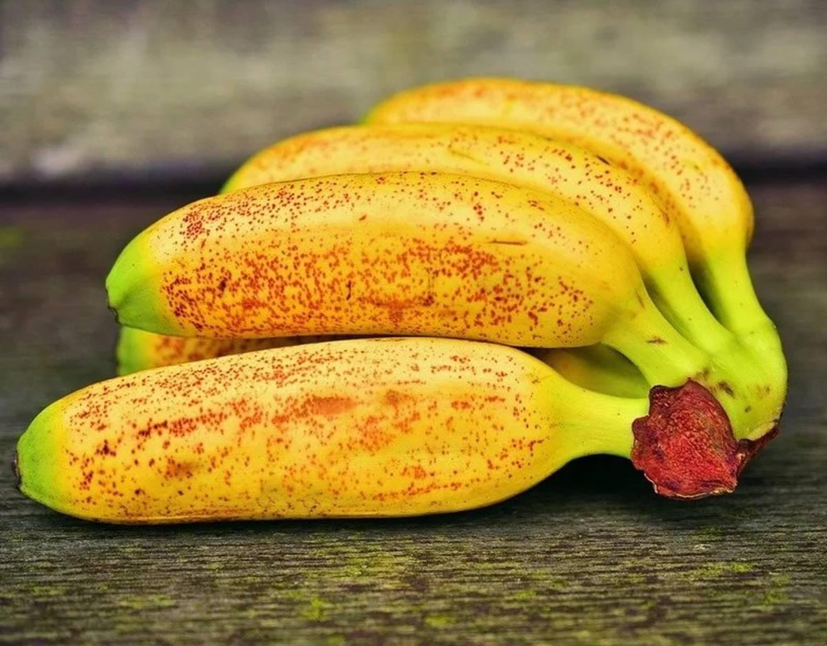 banana giapponese moogie