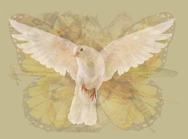 colomba pasquale: le leggende storiche del dolce tipico