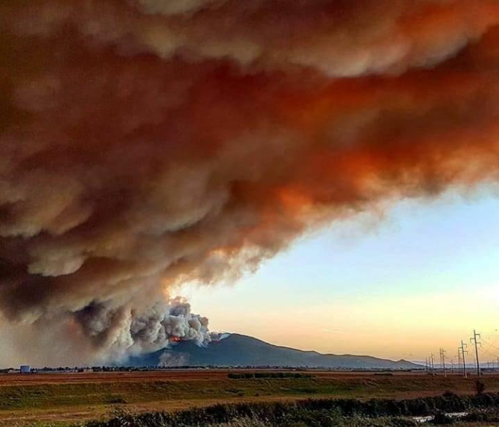 incendio Pisa