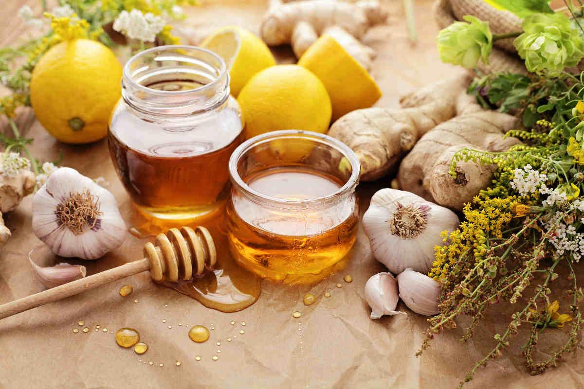 zenzero, aglio e miele contro colesterolo