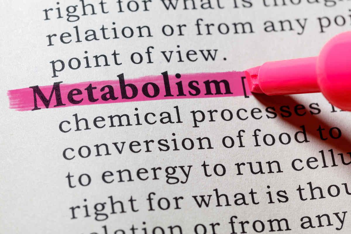 segnali metabolismo lento