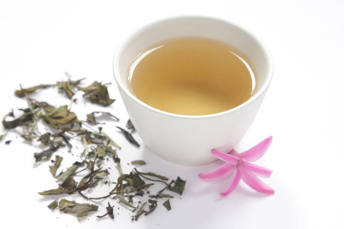 tè bianco proprietà