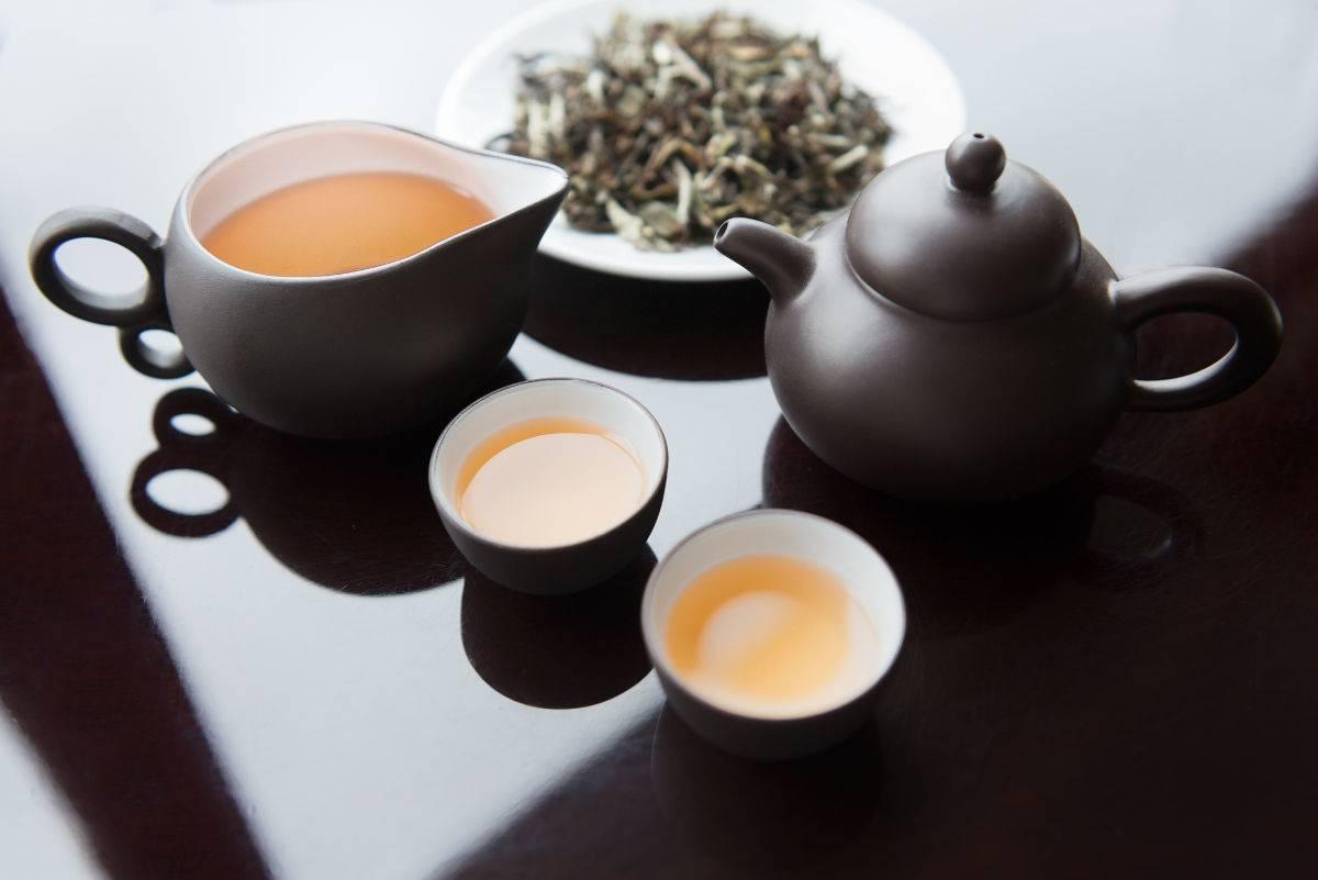 tè bianco benefici