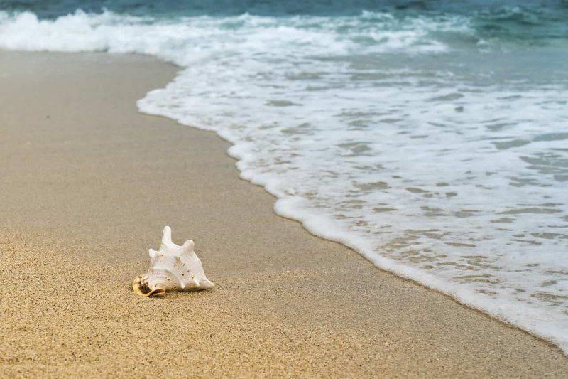 I più originali nomi per bambini ispirati al mare