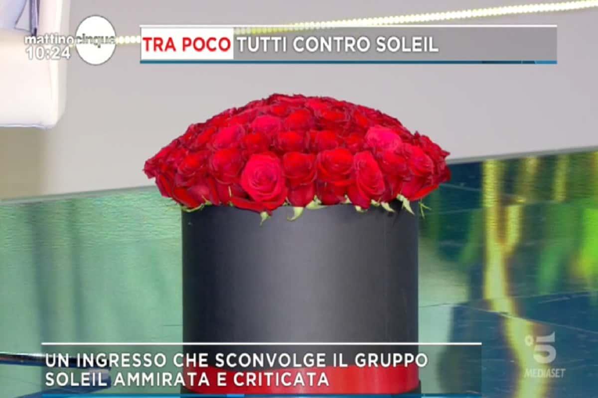 federica panicucci rose rosse diretta fidanzato marco bacini san valentino