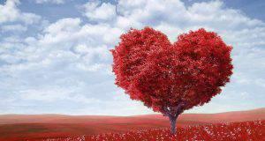 San Valentino: romantico biglietto fai da te a fisarmonica con scatola