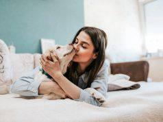 E' ufficiale, preferiamo i cani agli umani, lo conferma questo studio