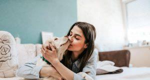 La saliva del cane è malsana per la salute? Ecco cosa rivela questo studio
