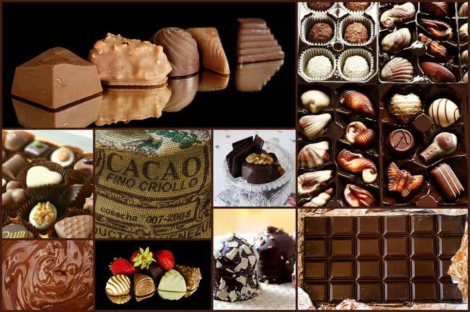 ricette con cacao
