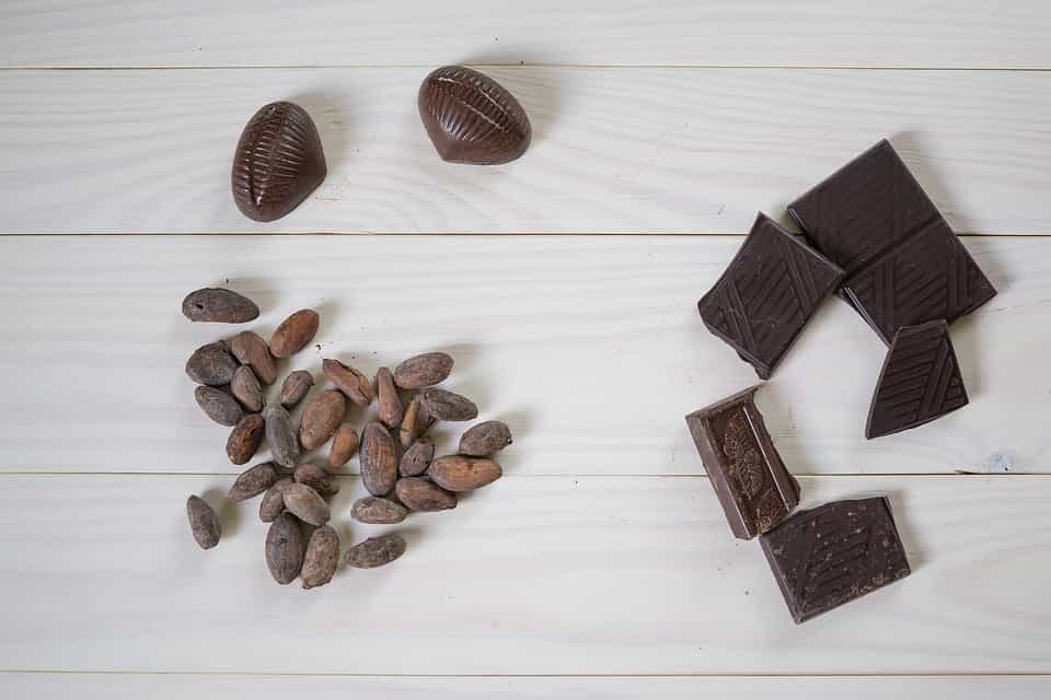 cacao e cioccolato ricette