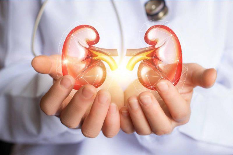 problemi ai reni