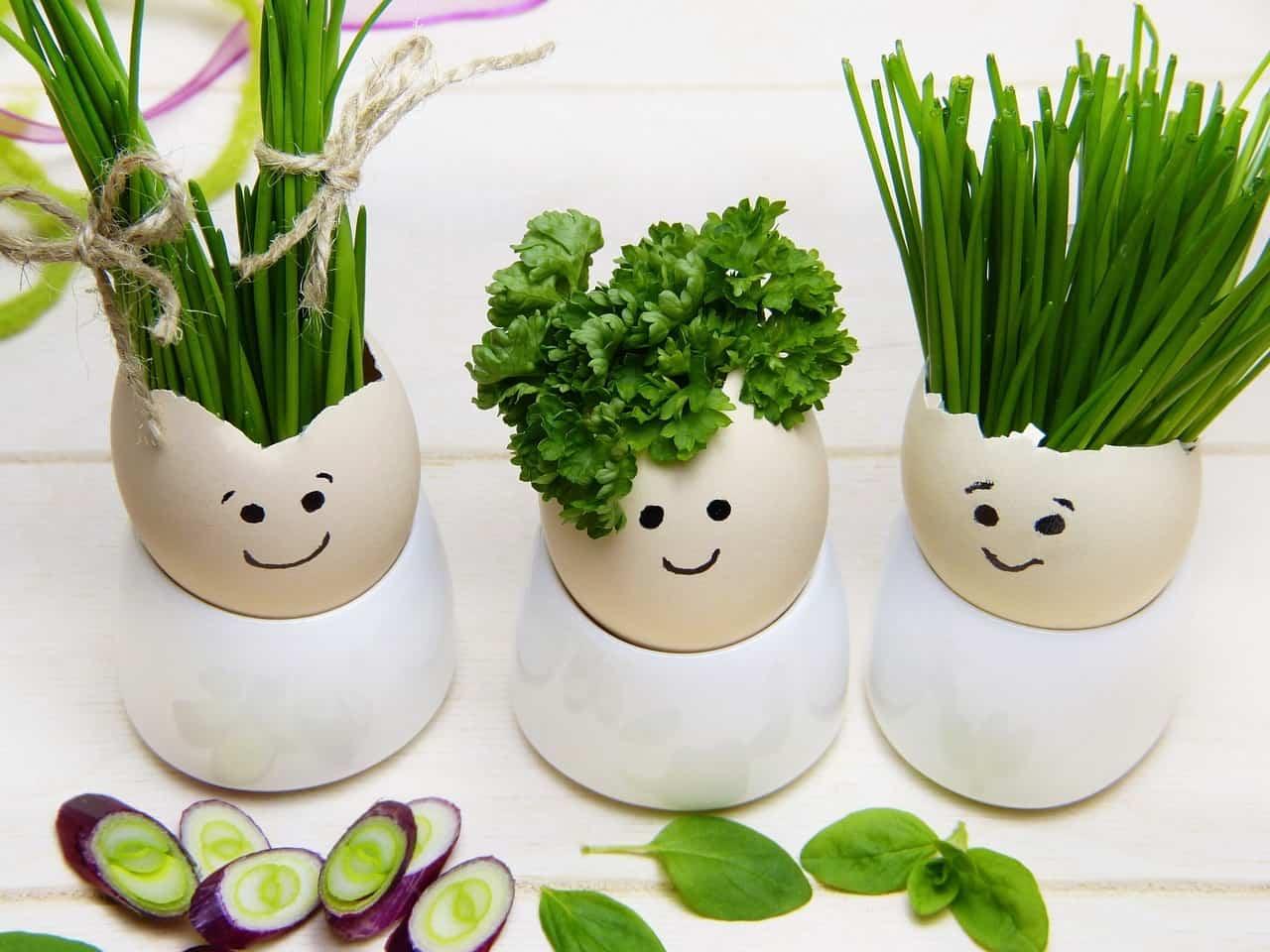 Pranzo di Pasqua 2019 vegetariano, il menu completo