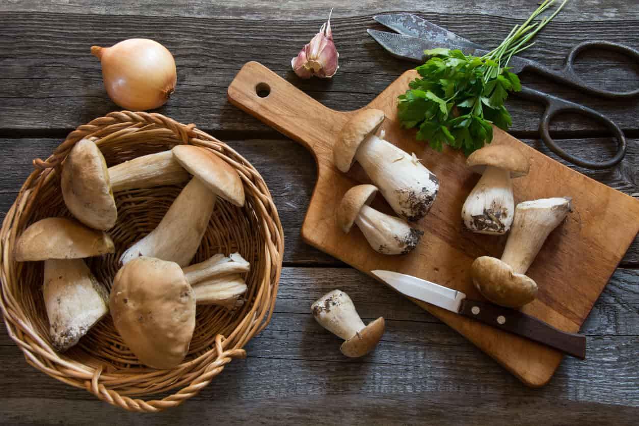 Cosa cucino oggi? Il menu completo per pranzo e cena con i funghi porcini