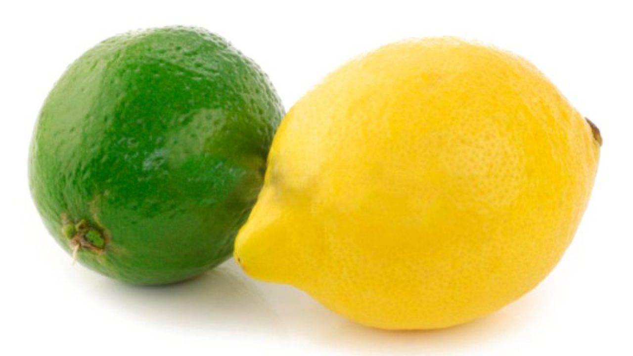scorza di limone congelata per dimagrire