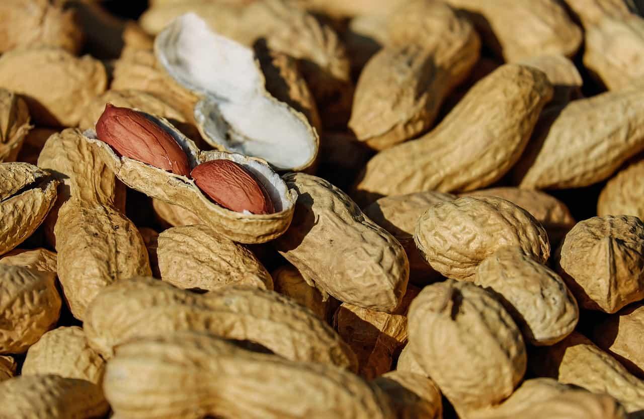 arachidi proprietà controindicazioni