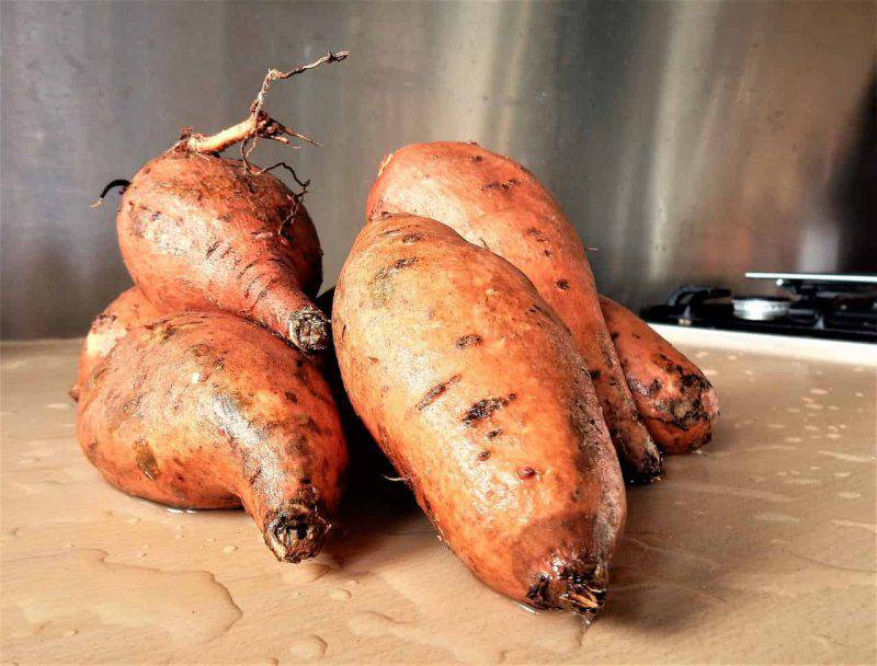 radice di patata dolce per dimagrire