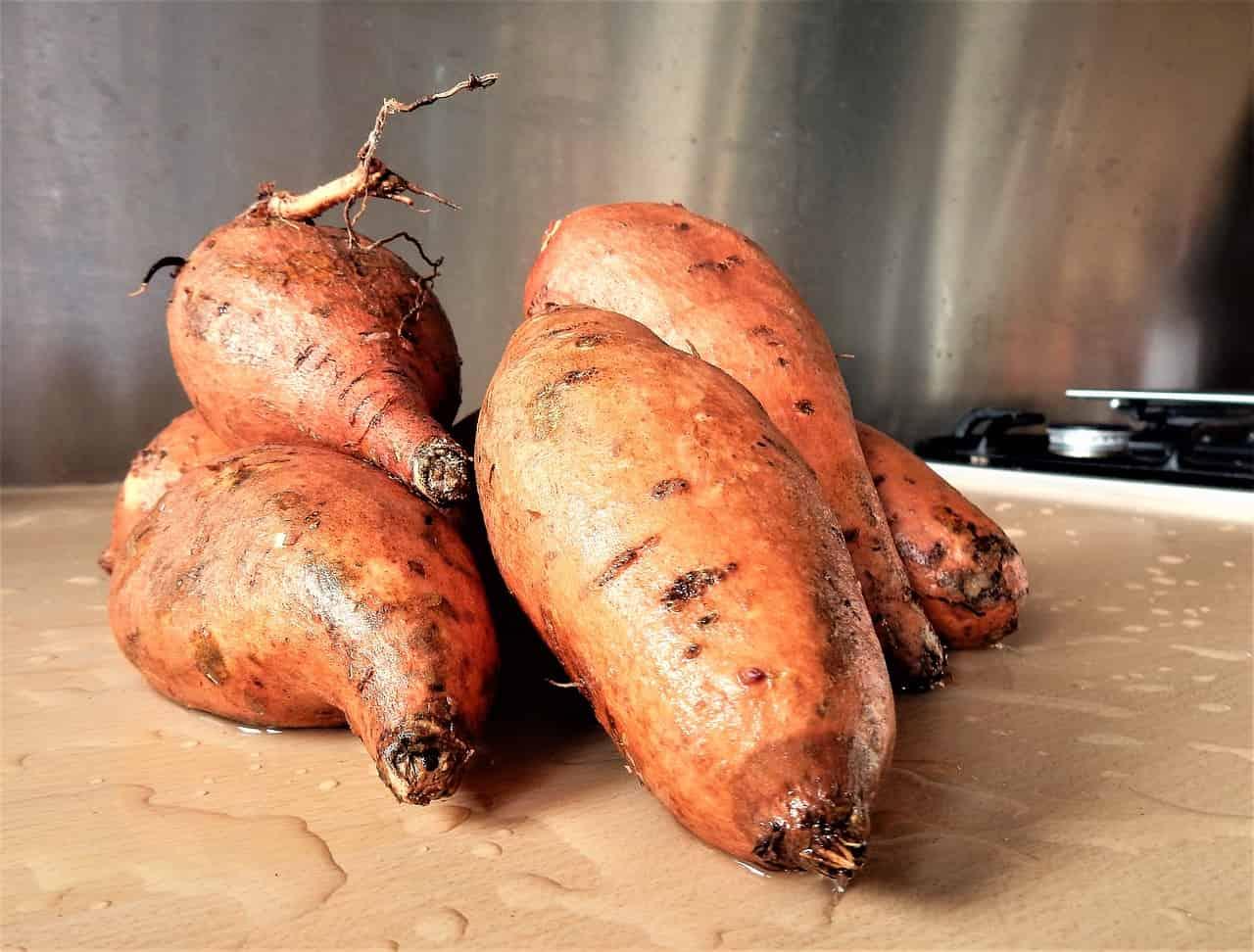 indice glicemico patata dolce bianca